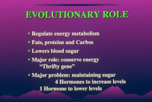 dia 0015 300x201 Insulin:  Its Crucial Role in Chronic Illness  – Ron Rosedale.  Part 1 of 2.