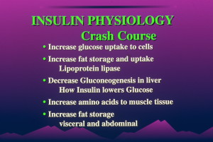 dia 0023 300x201 Insulin:  Its Crucial Role in Chronic Illness  – Ron Rosedale.  Part 1 of 2.