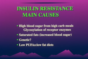 dia 0030 300x201 Insulin:  Its Crucial Role in Chronic Illness  – Ron Rosedale.  Part 1 of 2.