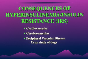 dia 0037 300x201 Insulin:  Its Crucial Role in Chronic Illness  – Ron Rosedale.  Part 1 of 2.