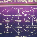 The Tangled Web of Coronary Risk Factors [Insulin: Its Crucial Role in Chronic Illness - By Dr Rosedale, M.D.]
