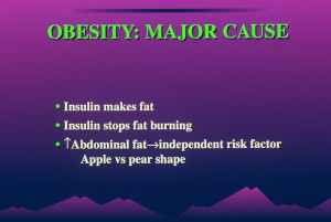 dia 0055 300x201 Insulin:  Its Crucial Role in Chronic Illness  – Ron Rosedale.  Part 1 of 2.