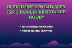 dia 0063 300x201 Insulin:  Its Crucial Role in Chronic Illness – Ron Rosedale.  Part 2 of 2